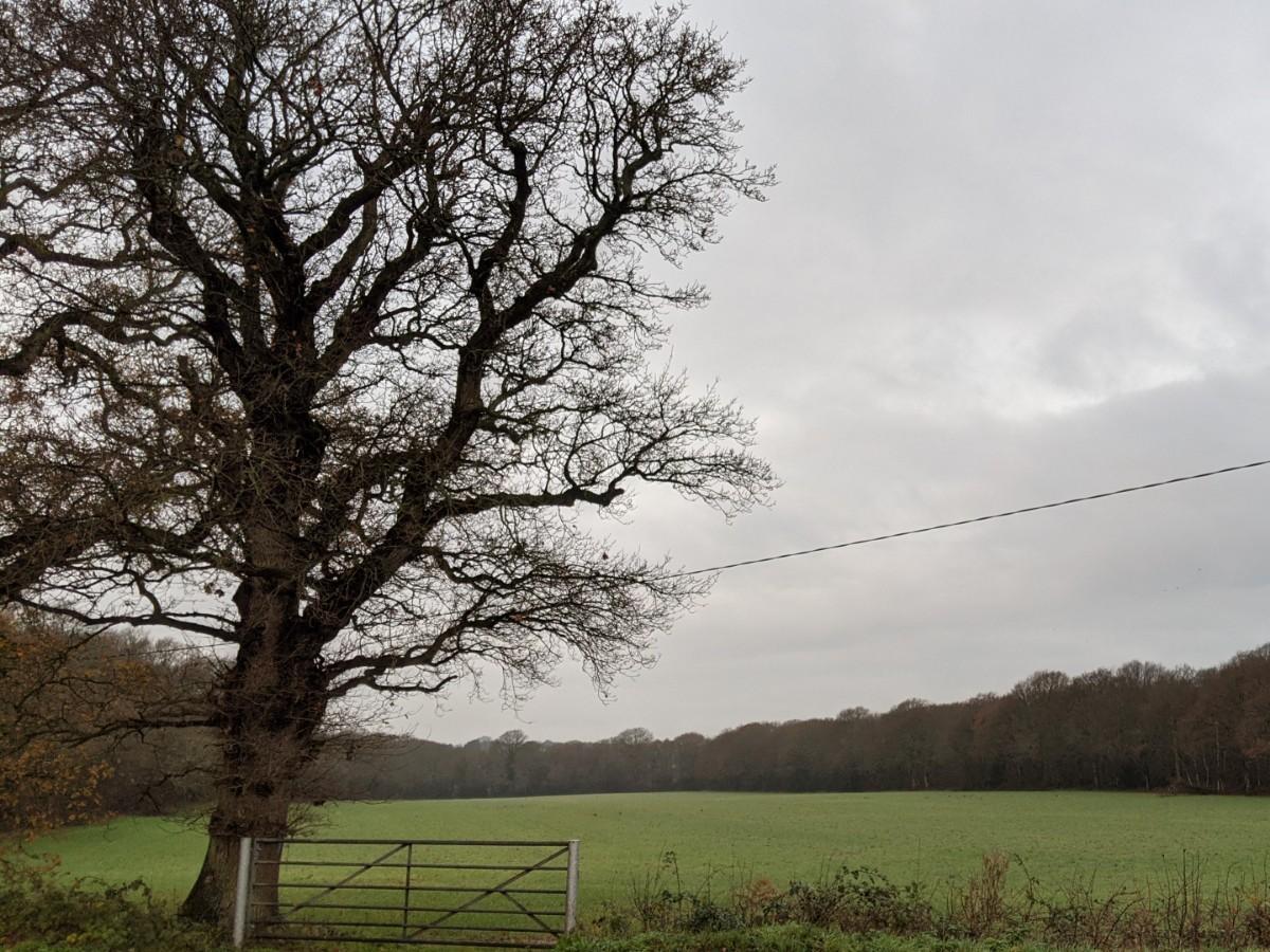 Park Farm, Hundred Acre Lane, Wivelsfield Green, field view